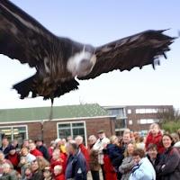 Opening Speeltuin en Roofvogelshow 17 maart 2007
