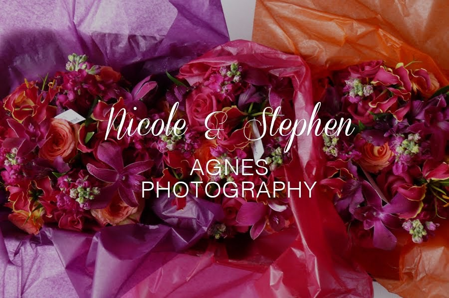 Nicole & Stephen by Agnes Photography