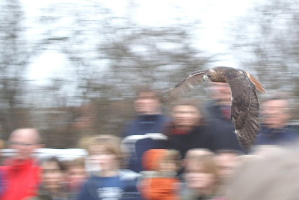 Opening Speeltuin en Roofvogelshow 17 maart 2007 - Nr_158