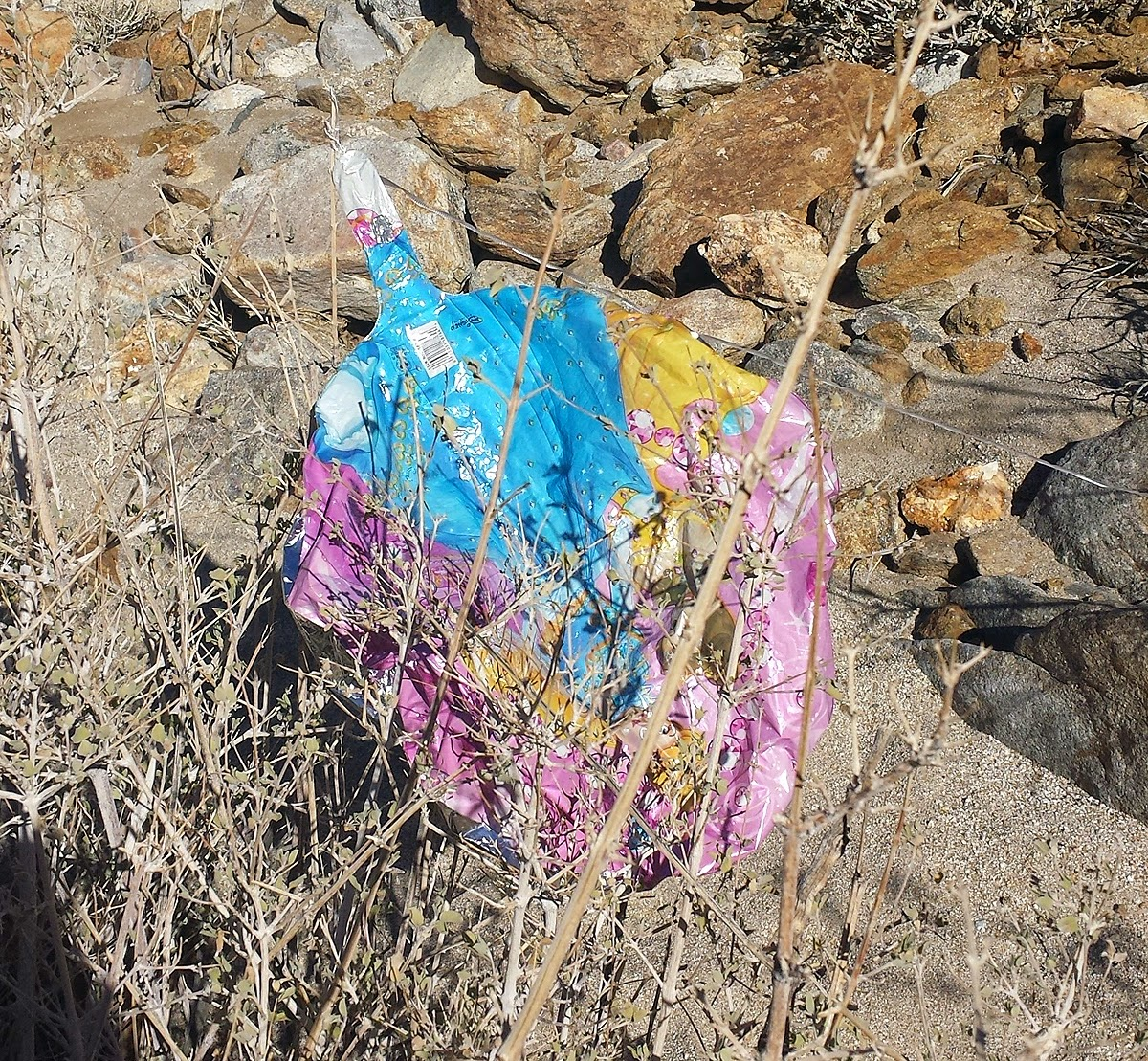Found one Mylar balloon on the way up. Unfortunately Mylar balloons can take years to biodegrade.