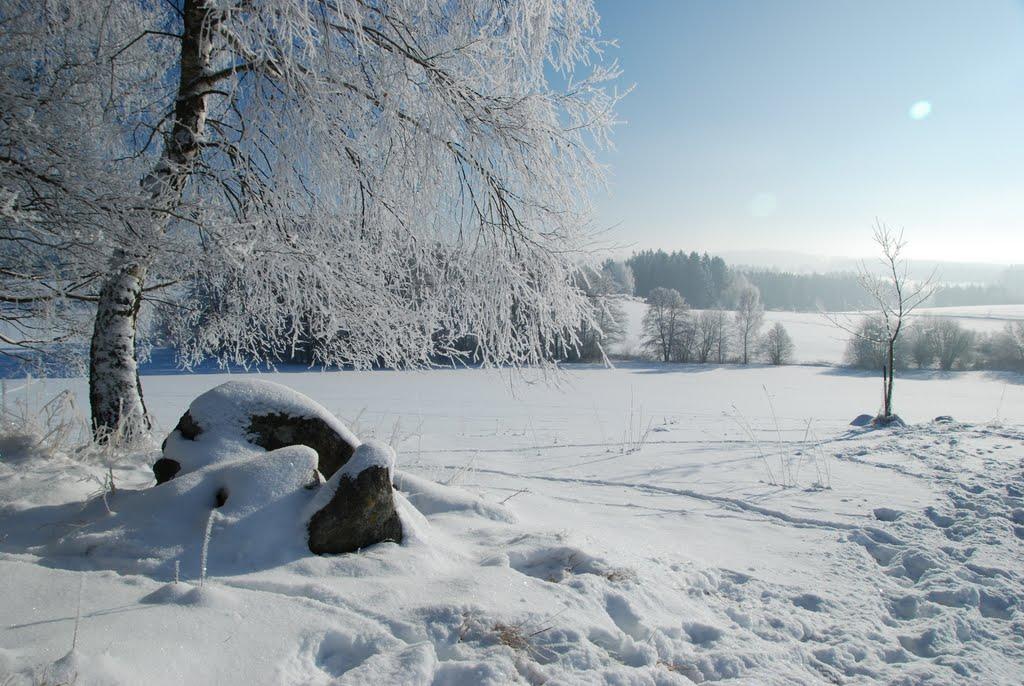 Ladovská zima 2010 - DSC_1601