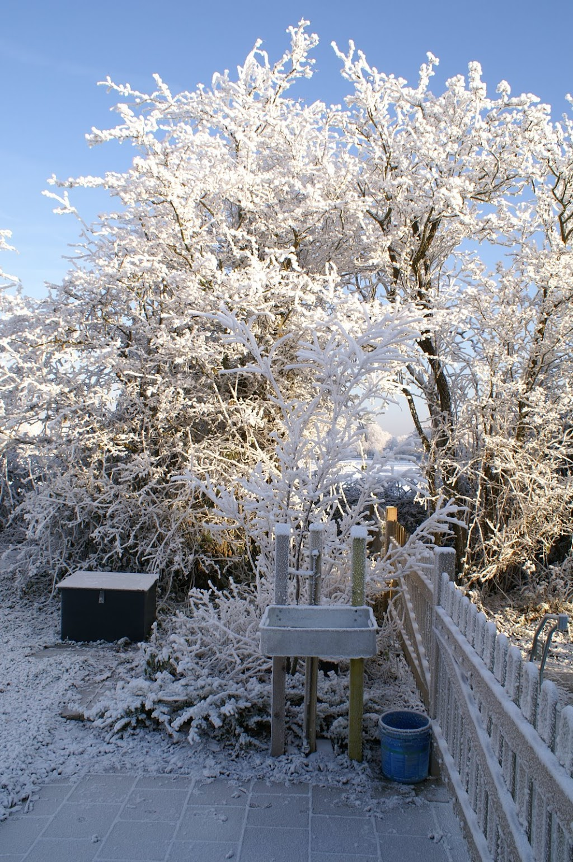 Kerst Speeltuin 2007 - PICT3948