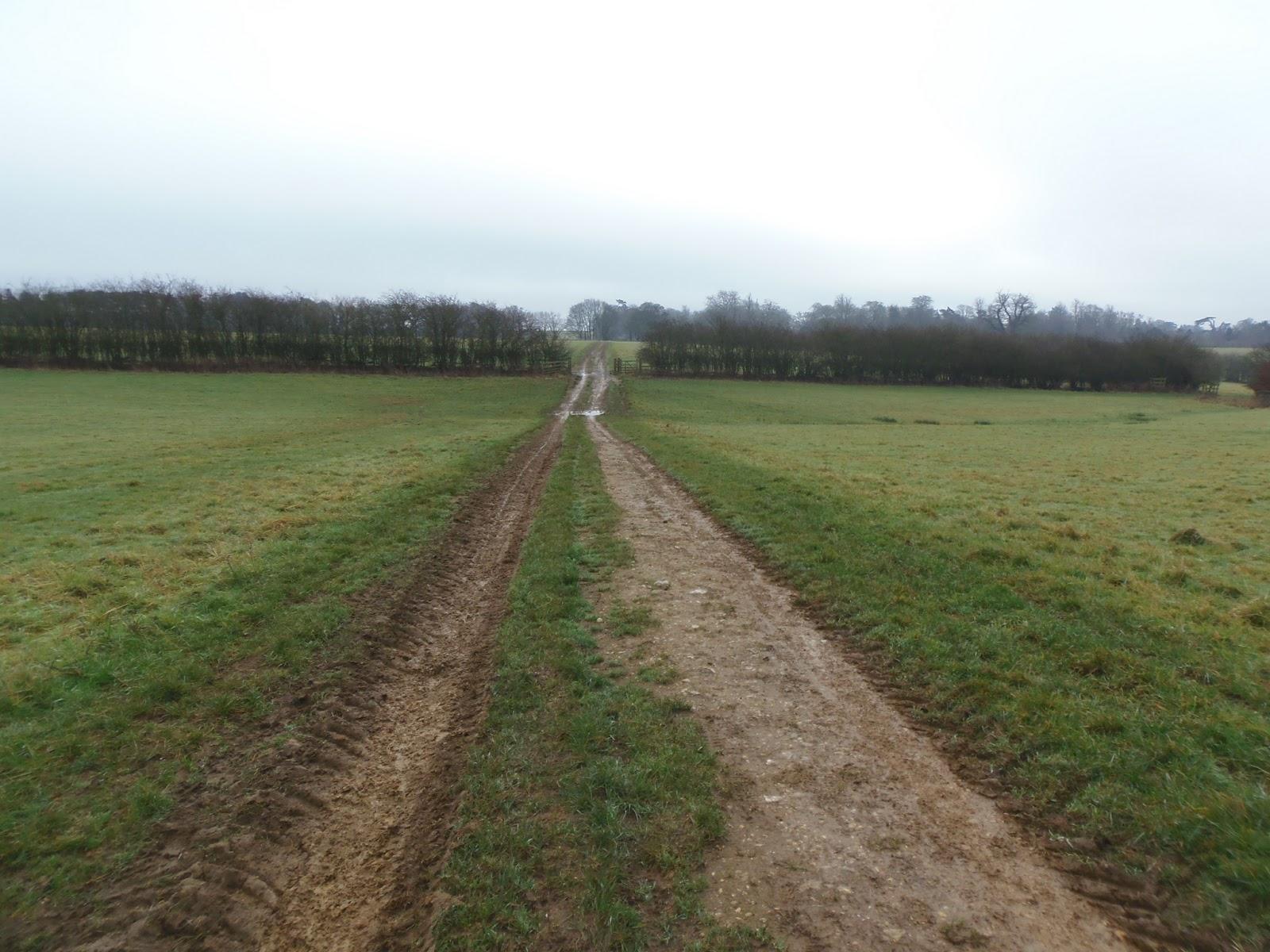 More Muddy Pathways