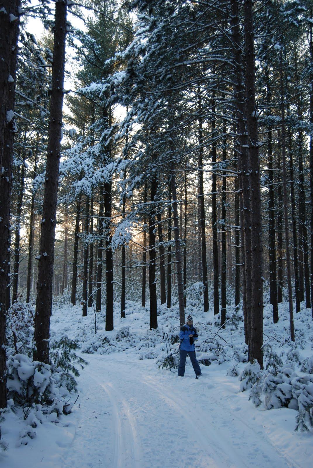 Plover River Ski Trails. Photo by Jim Buchholz