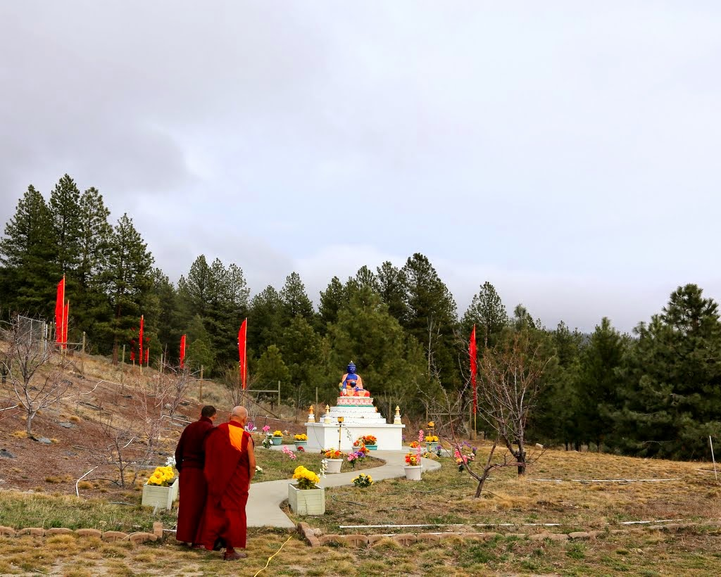Lama Zopa Rinpoche at Buddha Amitabhe Pure Land with some of the flower offerings, Washington, US, April 2014. Photo by Ven. Thubten Kunsang.