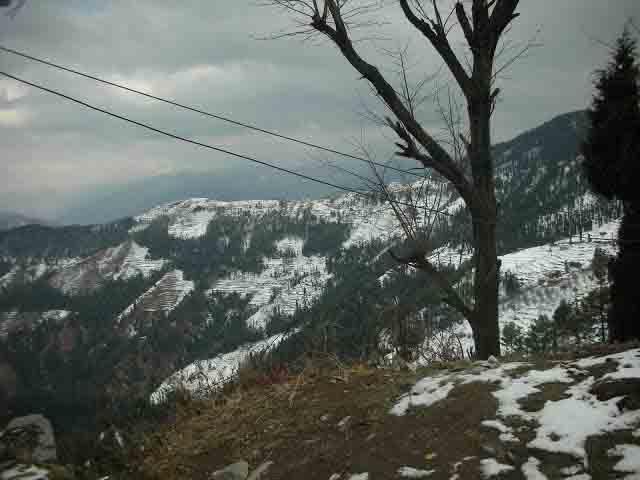 views from Kufri