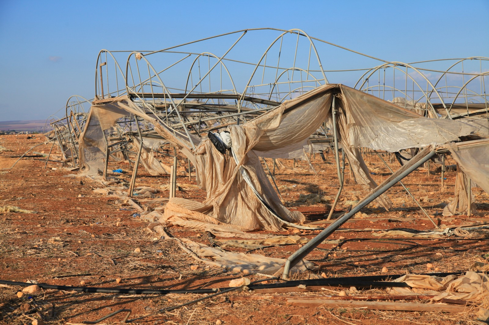 The state of agriculture in West Bank