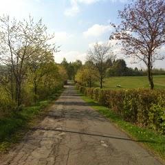 De weg - IMG_4422