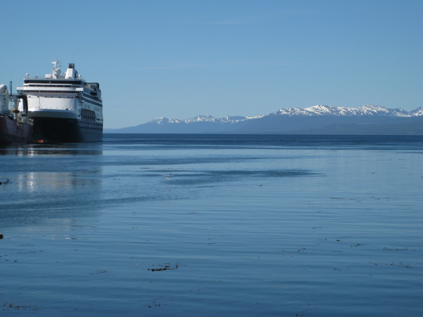 Beagle Channel, looking across to Chile