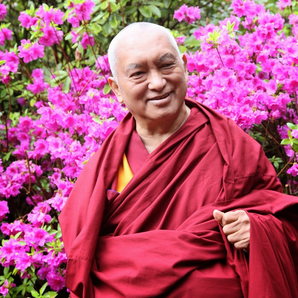 Lama Zopa Rinpoche with the blooming azaleas at Crystal Springs Rhododendron Garden, Portland, Oregon, US, April 2014. Photo by Ven. Thubten Kunsang.