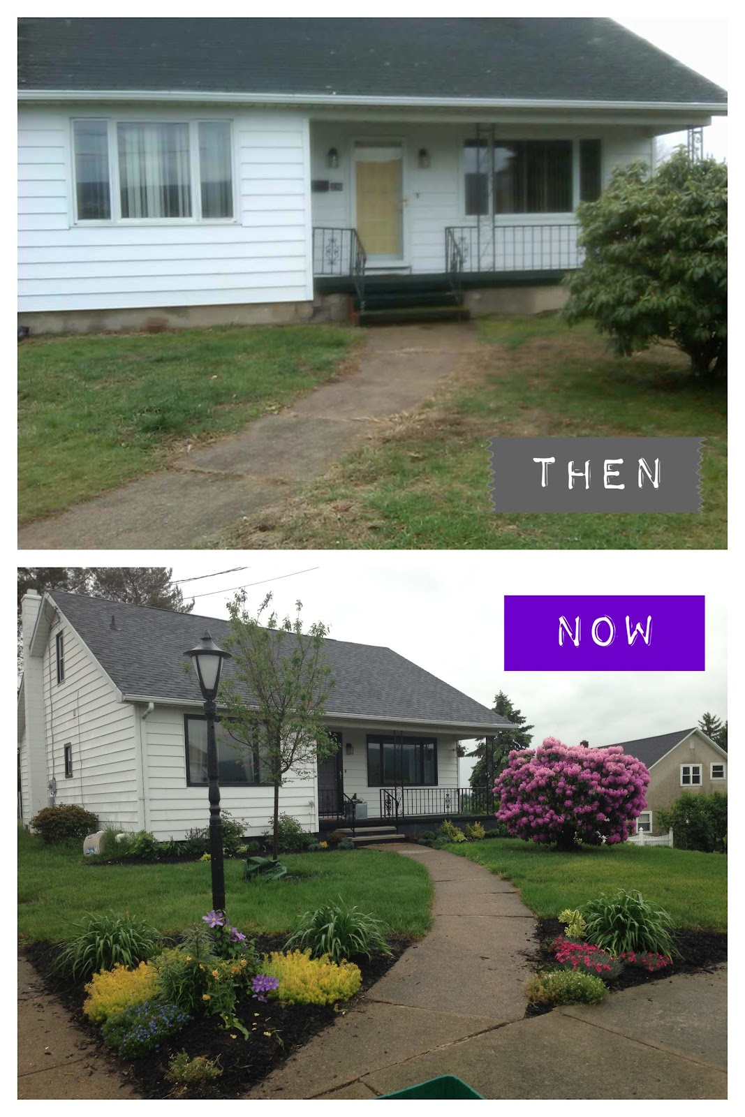 Then and now photo. How amazing is the difference