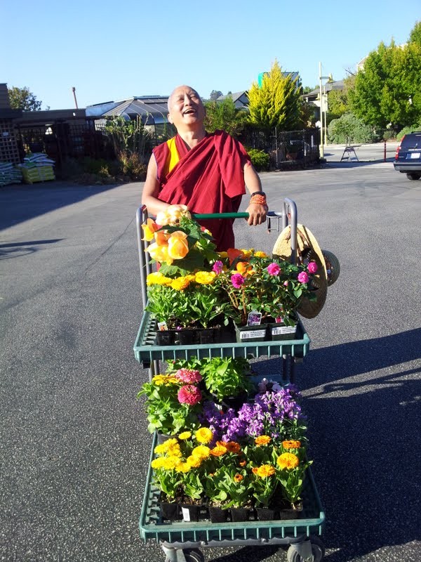 Rinpoche shopping for flower offerings in Santa Cruz