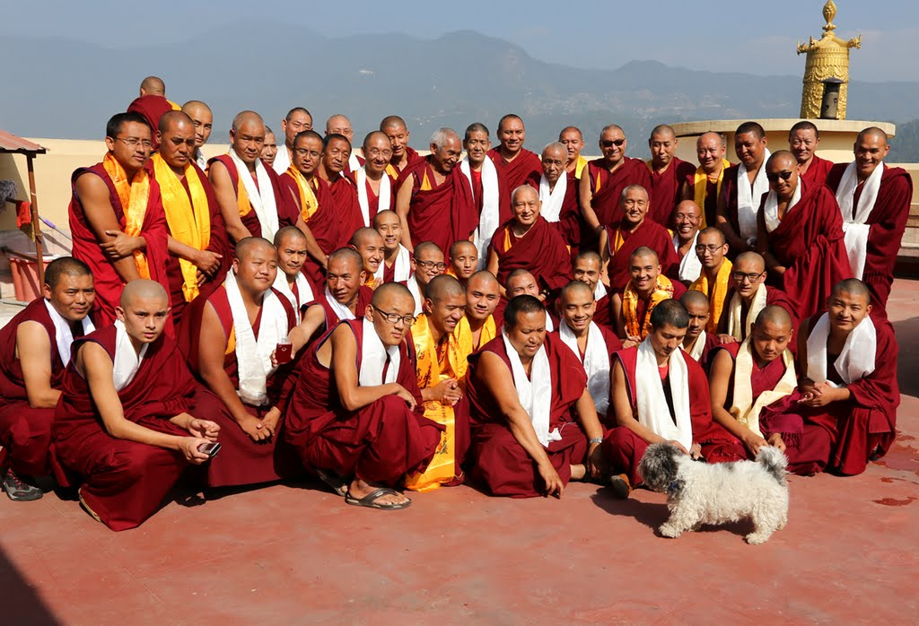Lama Zopa Rinpoche with the senior Kopan monks, Nepal, December 2014. Photo by Ven. Thubten Kunsang.