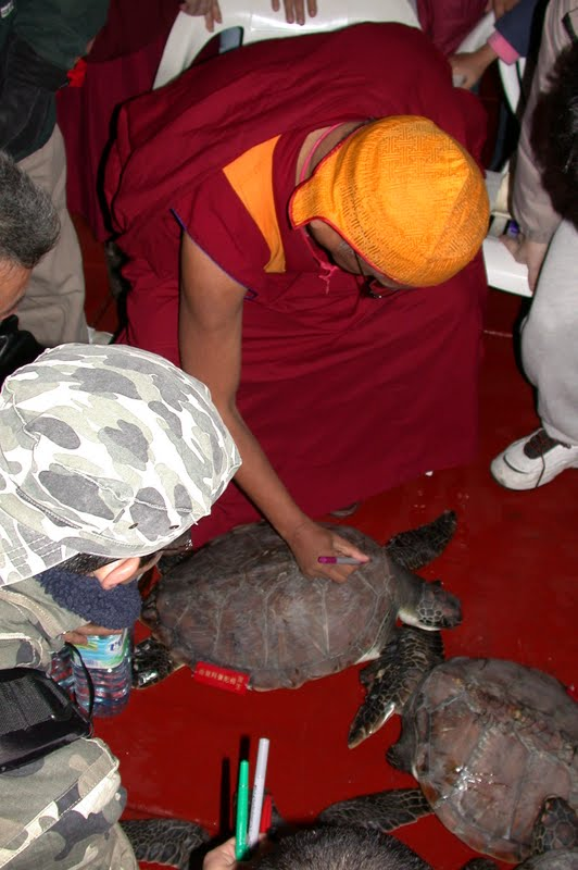 Lama Zopa Rinpoche writing mantras on a turtle during Hong Kong animal liberation