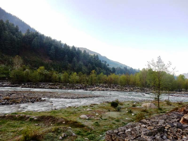 River Beas across the road