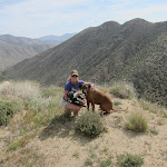 Mary with Sadie and Diesel high up on the ridge above Oriflamme Canyon