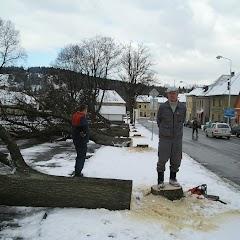 Kácení stromů na náměstí