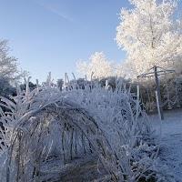 Kerst Speeltuin 2007 - PICT3940