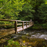 McKenzie_River2__6