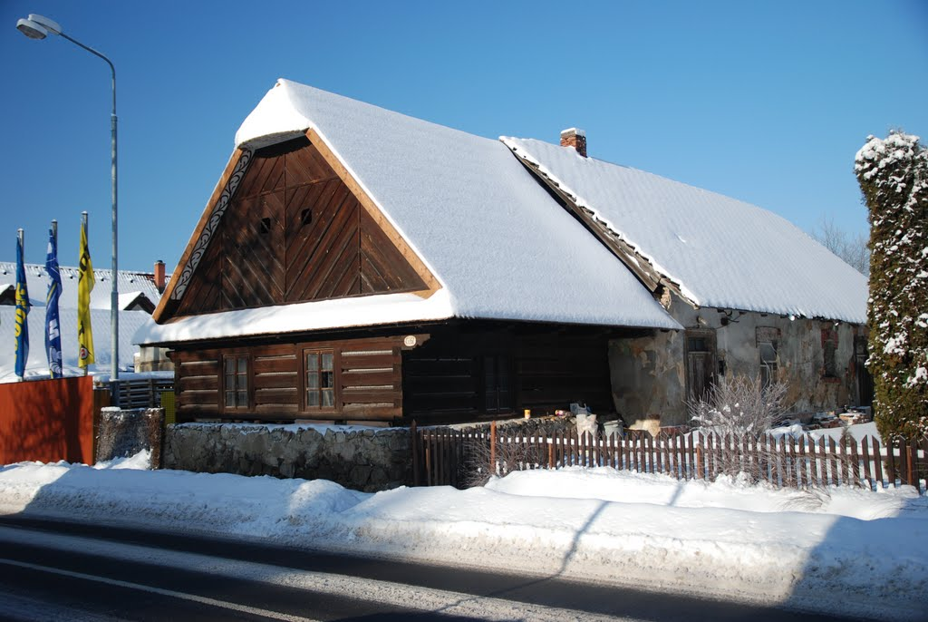 Ladovská zima 2010 - DSC_1539