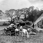 Threshing in 1935. In field now part of Upton Fruit Farm. From Mrs Keep's album.