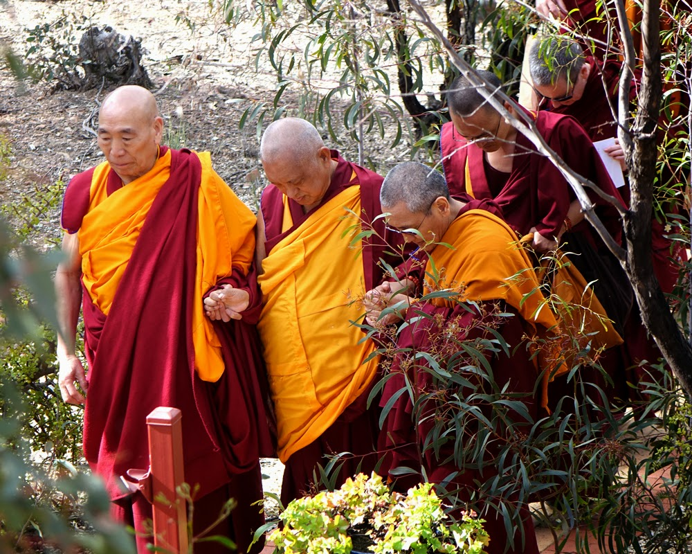 Lama Zopa Rinpoche with Geshe Doga and Khen Rinpoche Geshe Chonyi returning to Thubten Shedrup Ling from the Great Stupa of Universal Compassion while being mindful of the ants on the path, Australia, September 2014. Photo by Ven. Roger Kunsang.