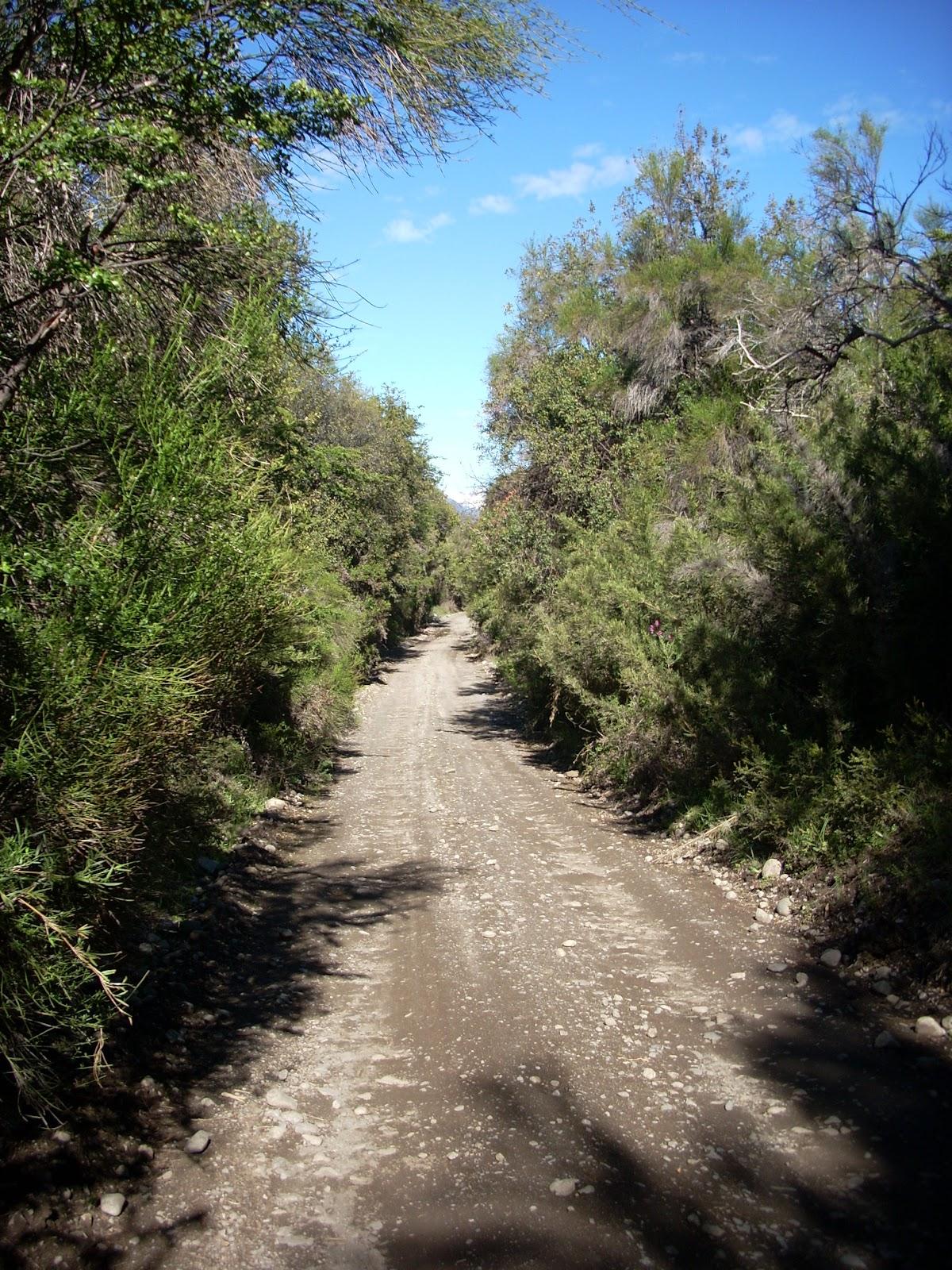 Lago Steffen detour, steep dirt road