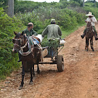 Cuban socialistic country side