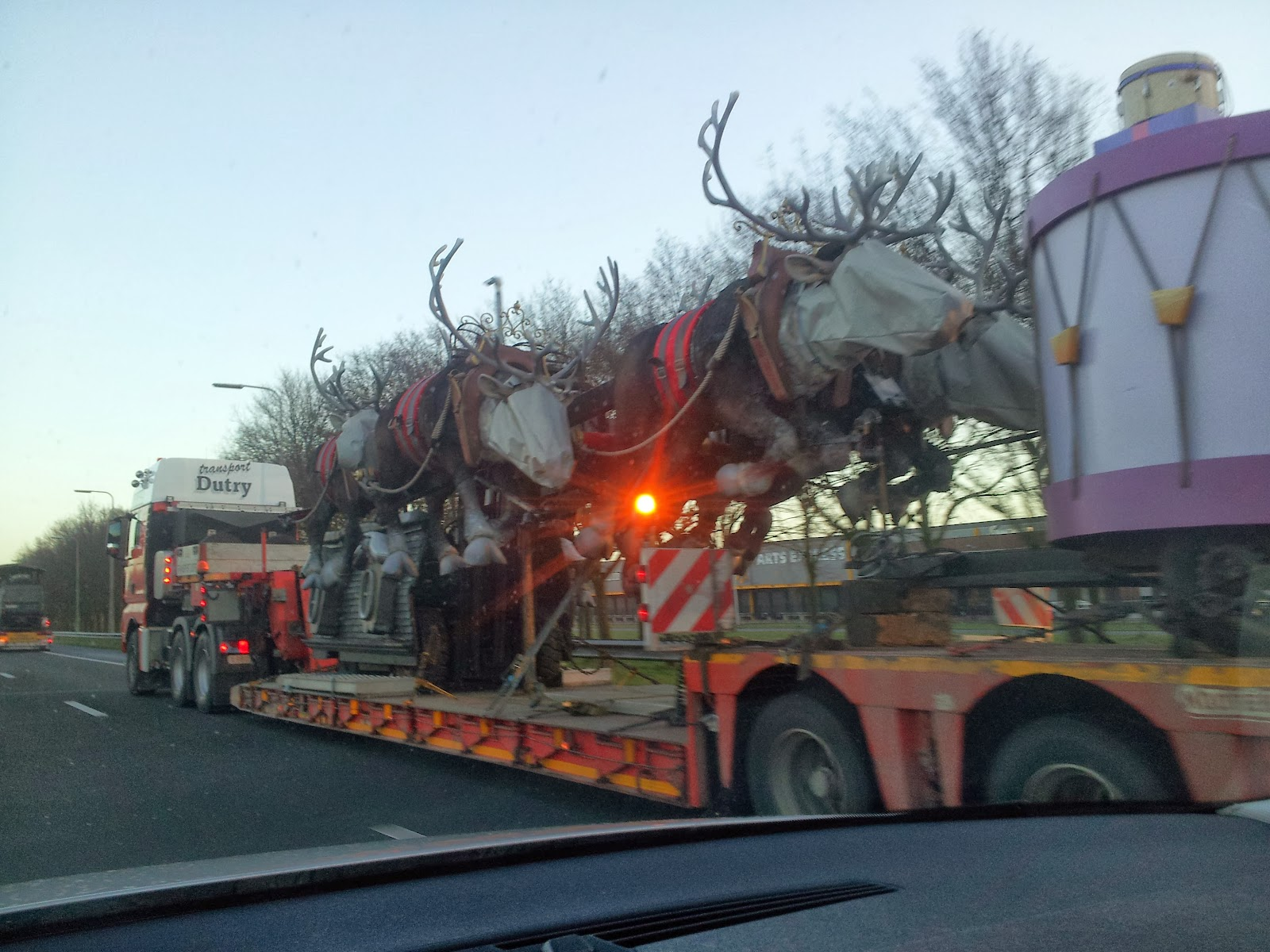 I thought reindeer flew