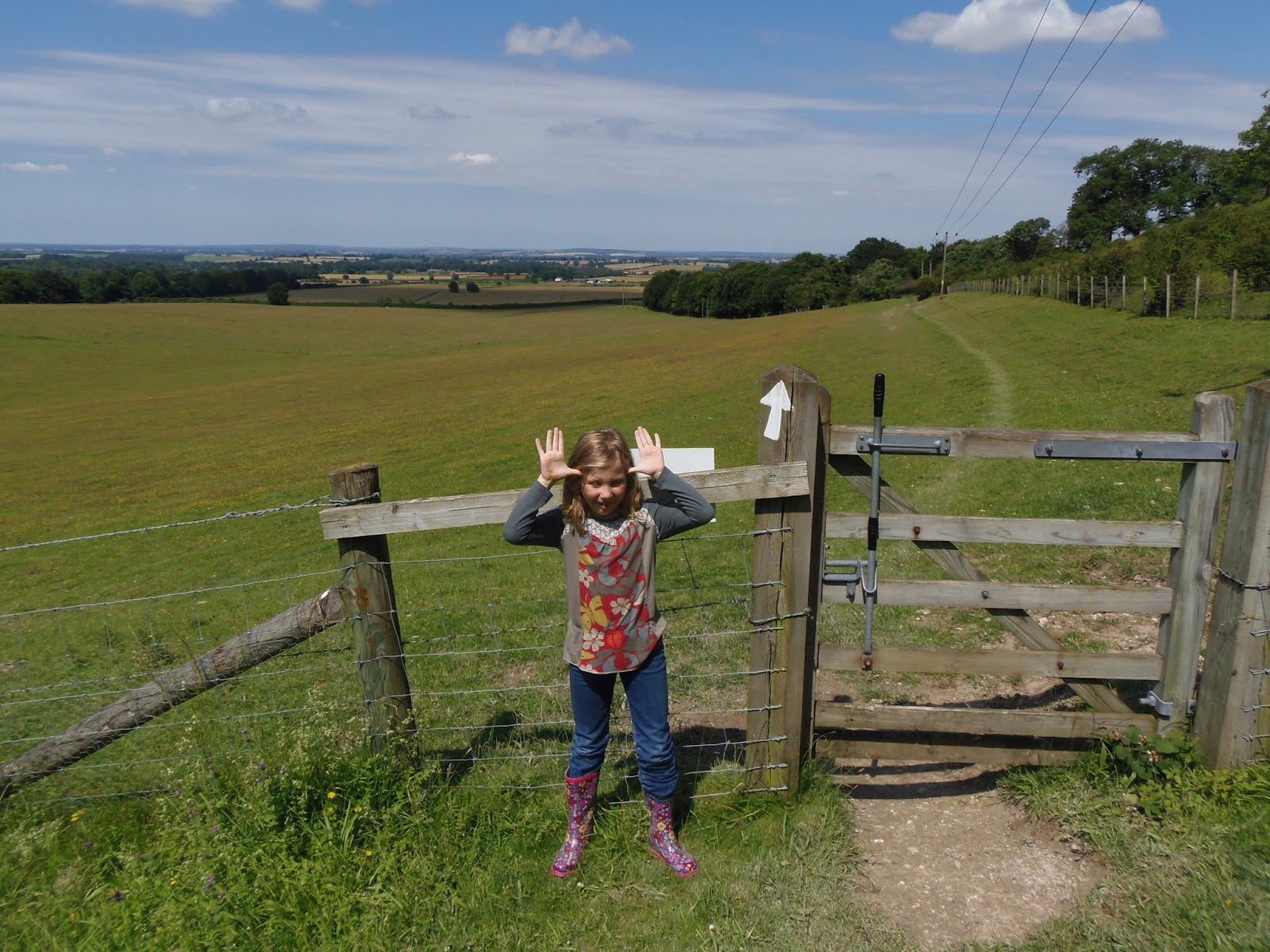 Lewknor Countryside with Ami