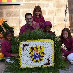 Ofrena Diada de Catalunya a la Seu Vella   11-09-13
