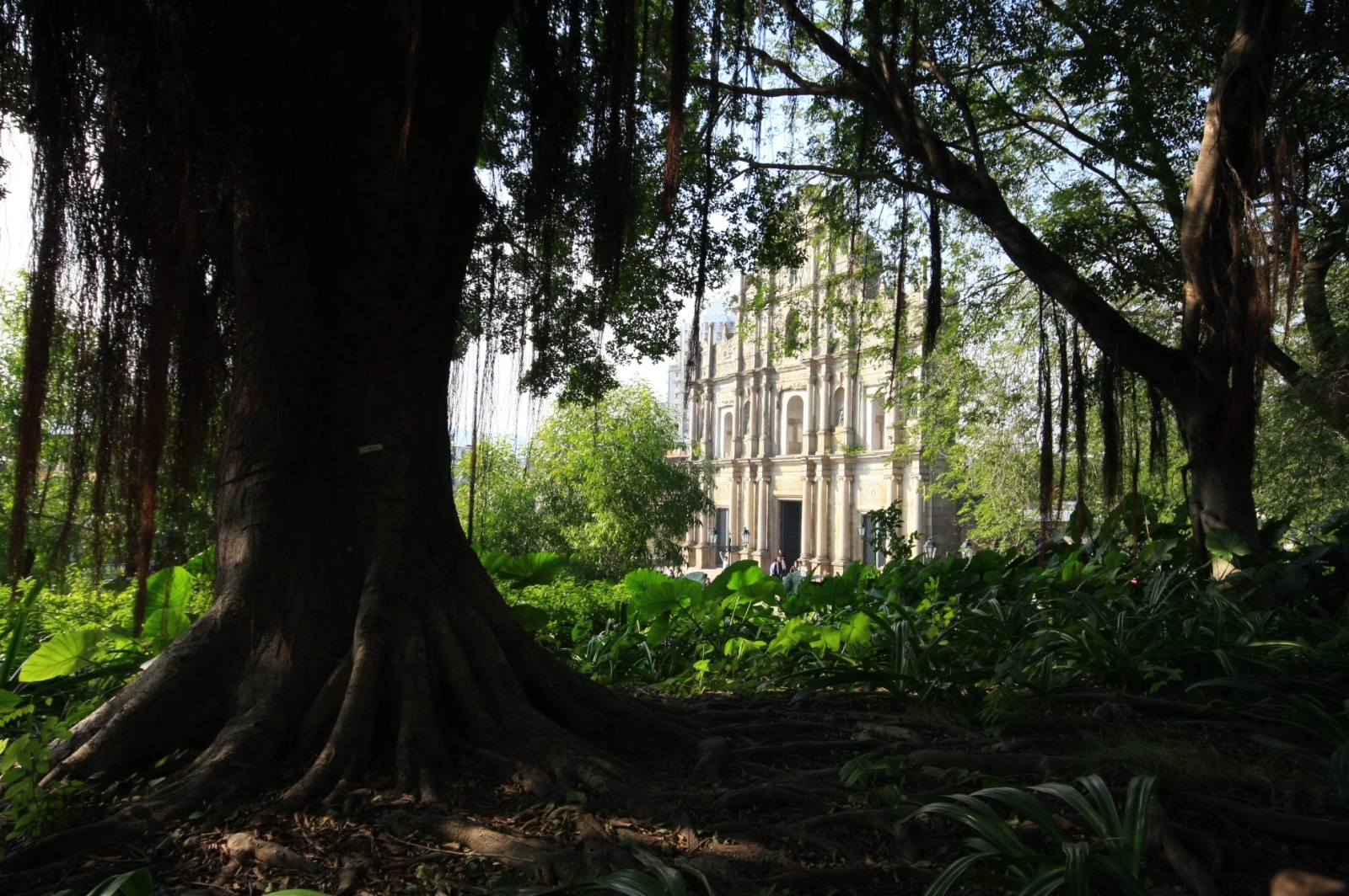 Feels like a lost city in jungle? Not quite - you're in the center of Macau!