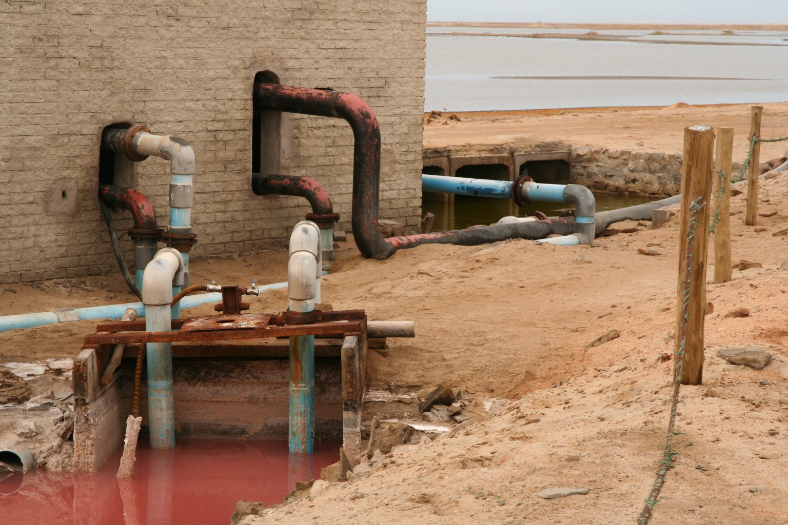 Pollution at the flamingo bay (do they get they color from this water?)
