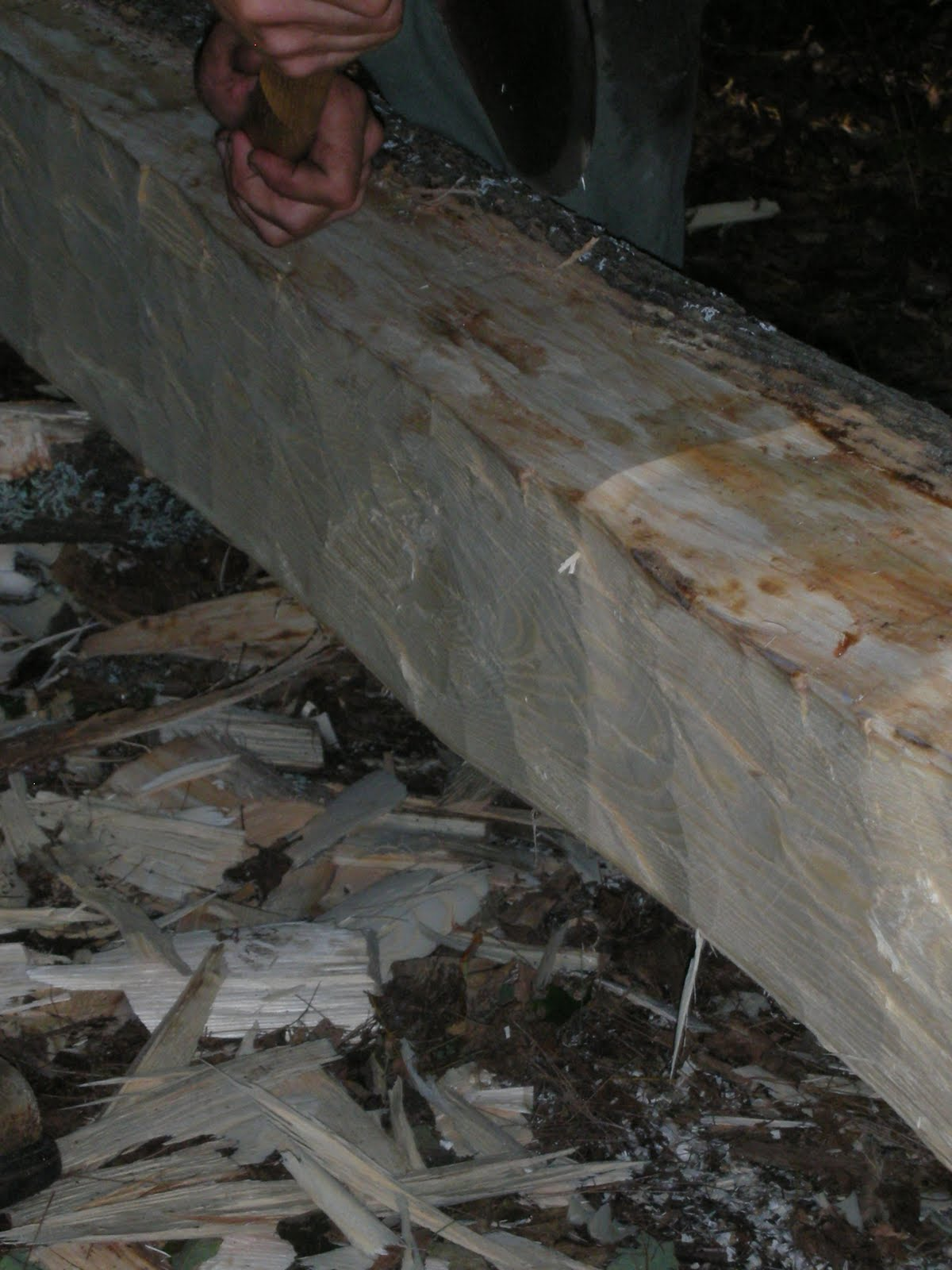An Ash log is hewn flat on one side to become a floor joist.