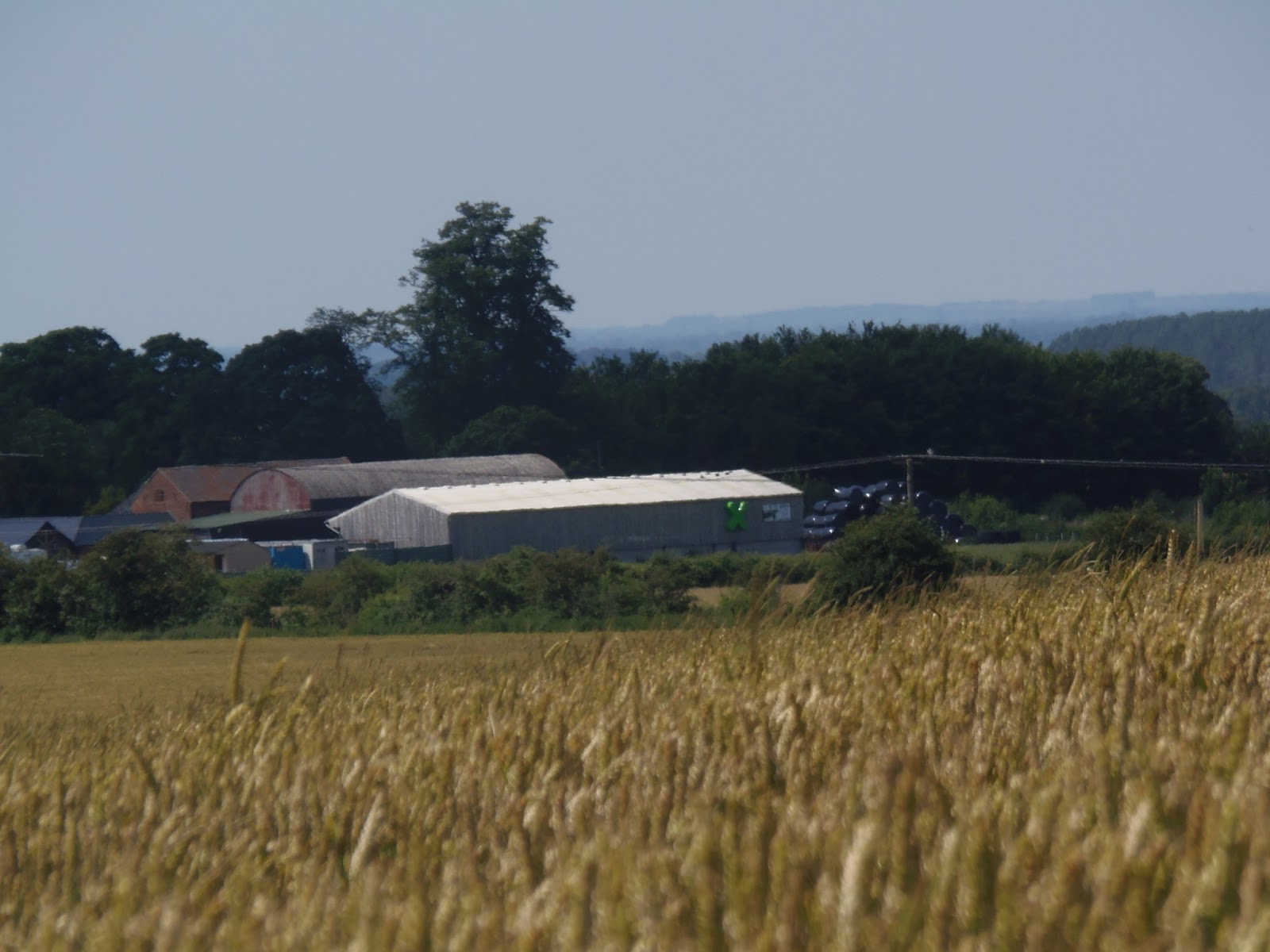 Lewknor Countryside