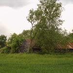Frog Alley Farm, 2003