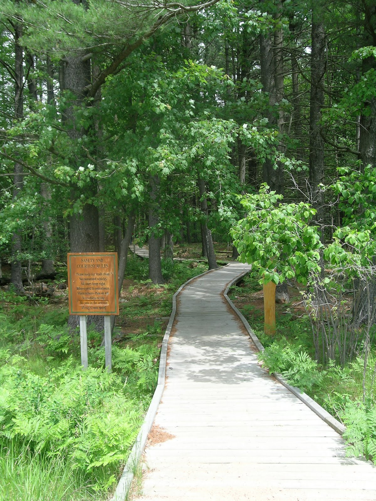 University Trail, west entrance to Schmeeckle Reserve