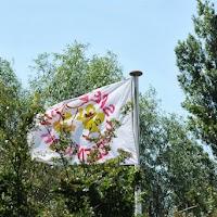 Kampeerweekend 2013 zaterdag deel 1 - DSC_1381
