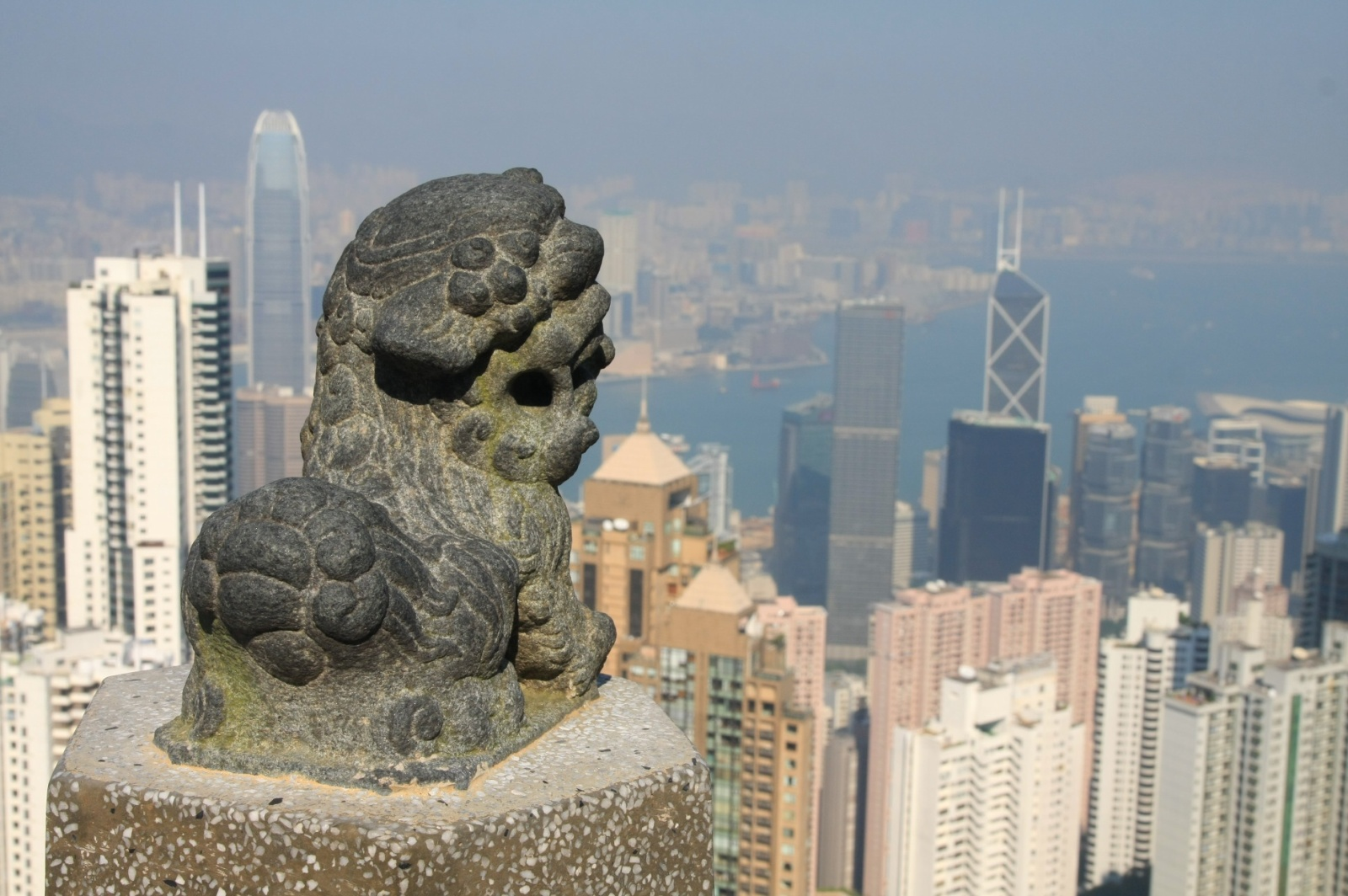 Lions seemingly protectively overlooking the Great Urban Jungle
