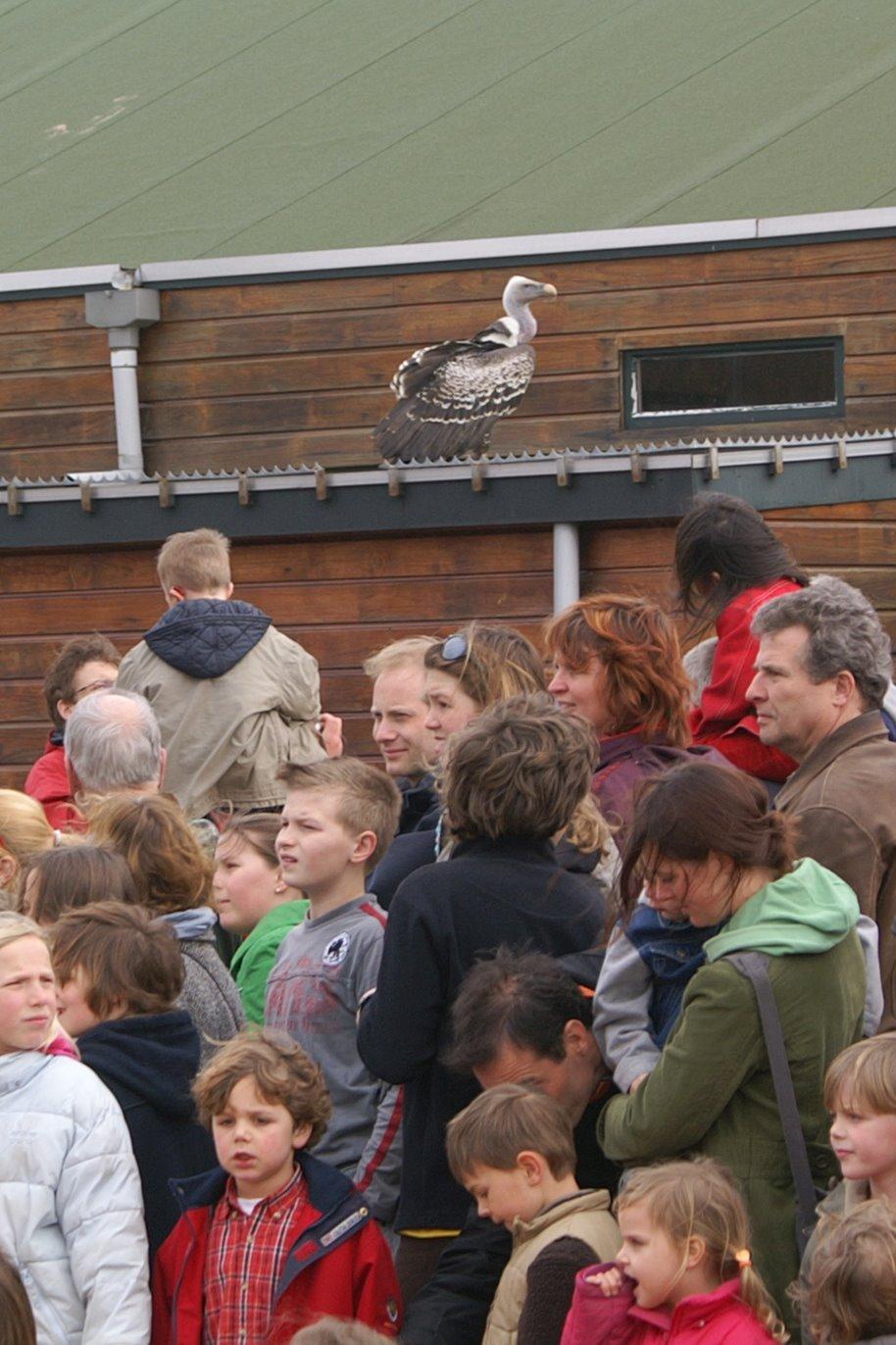Opening Speeltuin en Roofvogelshow 17 maart 2007 - Nr_046