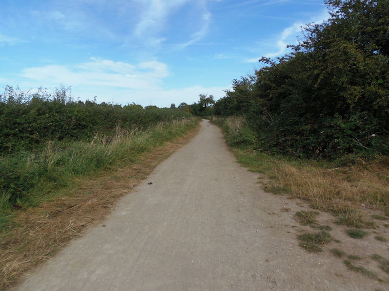 Weasel Lane