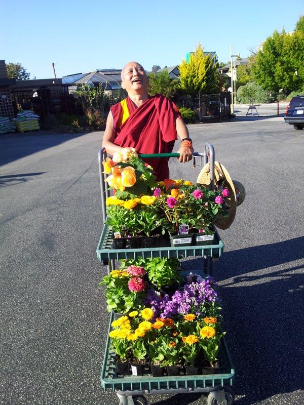 Rinpoche shopping for flower offerings in Santa Cruz