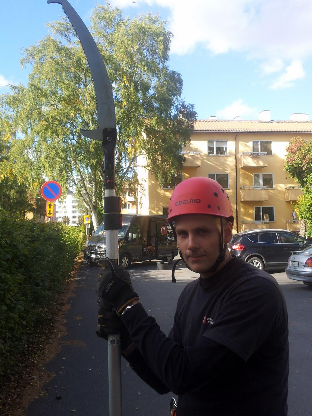 Per är, liksom Mark, en skicklig klättrare som utför det mesta inom trädvård.