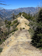 Photo: View northwest down my ridge route