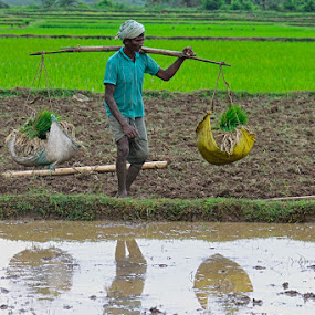 Mirror Image by Debatosh Chakraborti - Professional People Agricultural Workers ( nature, fine arts, food, landscape, people )