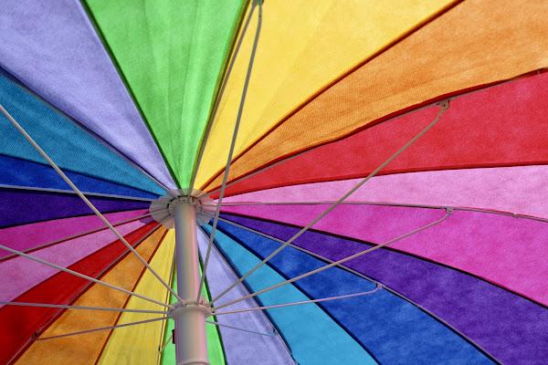 All summer's colors di michimotta
