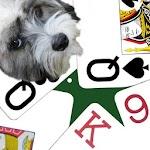 K9 Sheepshead icon