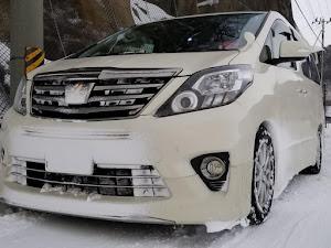 アルファード ANH25W 親車 240S タイプゴールド 4WDのカスタム事例画像 青森県のタイプゴールドさんの2019年02月10日21:47の投稿