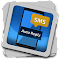 Auto Reply SMS 1.1 Apk