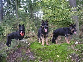 Photo: A-team wandeling Spanderswoud, Aug. 06